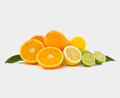zitrusfrucht_dampfsteine_1.png