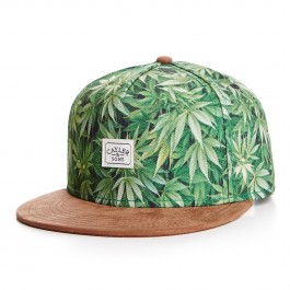 https://www.smokestars.de/media/catalog/product/cache/1/image/265x/9df78eab33525d08d6e5fb8d27136e95/2/-/2-tone-kush-cap-green-mc-brown-suede-01.jpg