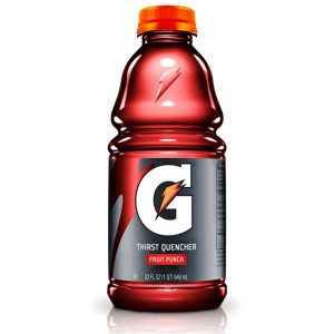 GATORADE Fruit Punch (591 ml)