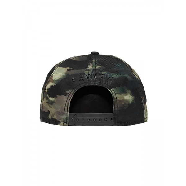 CAYLER & SONS WL Scripted Cap multicolor